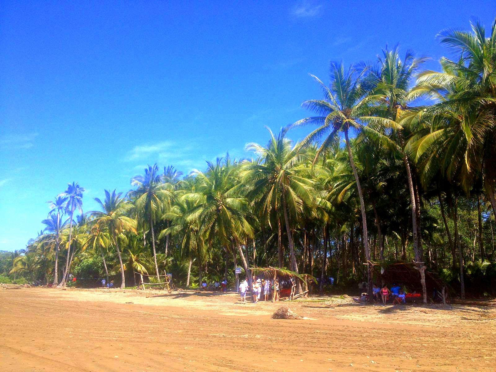 Erfahrungsbericht Costa Rica Leefke