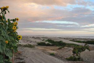 Auslandsaufenthalt Peru Dünen