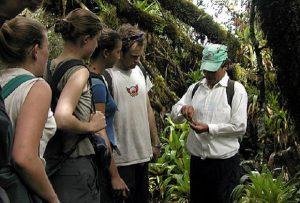 Freiwilligenarbeit Ecuador Naturschutz