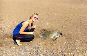 Schildkröten retten in Costa Rica