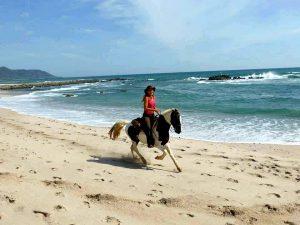 Ausritt am Strand Costa Rica