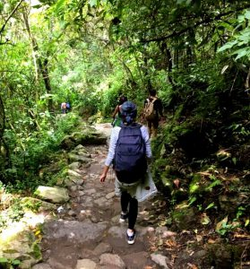 Erfahungsbericht Peru & Costa Rica