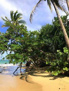 Erfahungsbericht Costa Rica Puerto Viejo