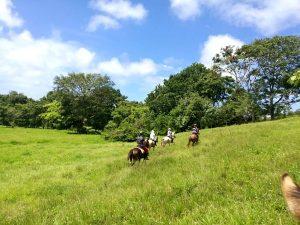 Reitpraktikum Costa Rica Wanderreiten