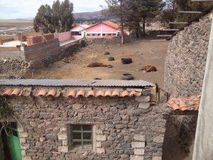 Reitpraktikum Peru Reitplatz
