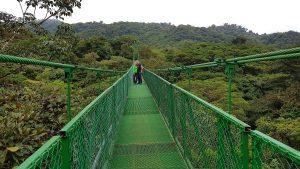Monteverde Riesen Costa Rica