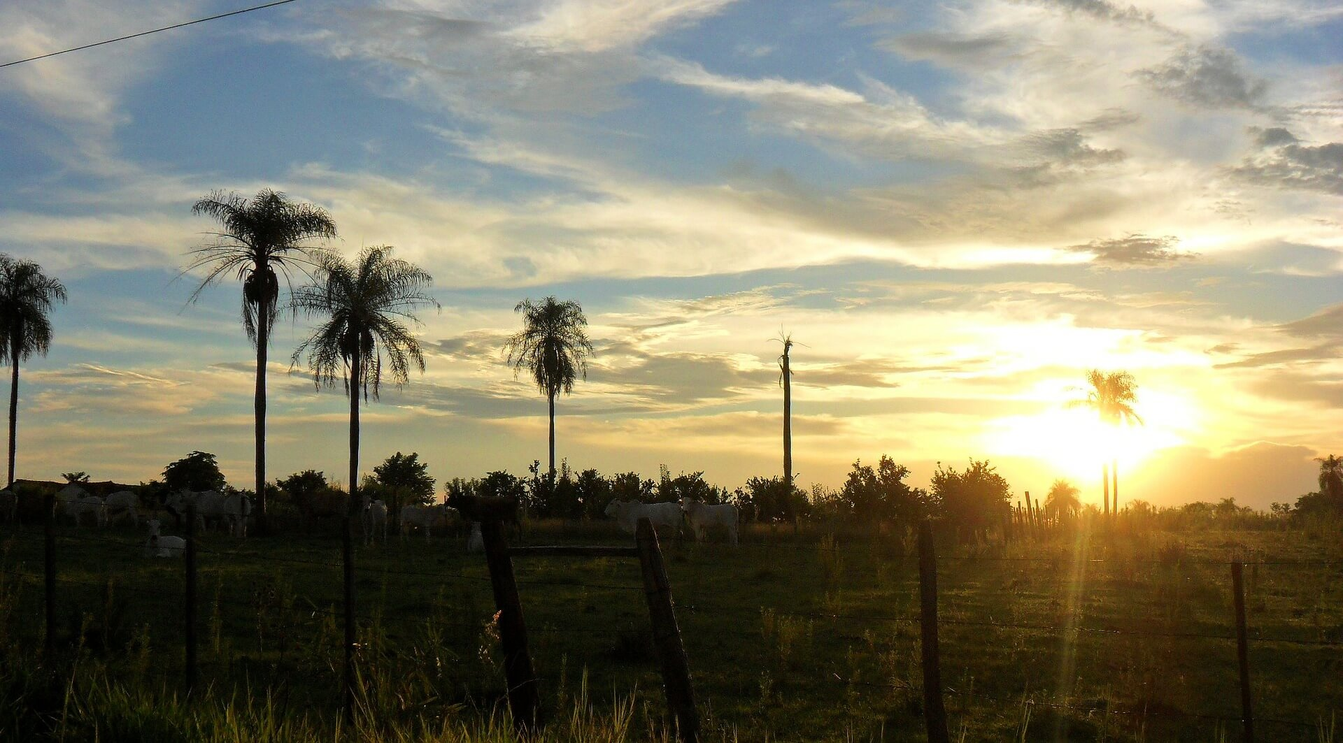 sunset in Paraguay Auslandspraktikum