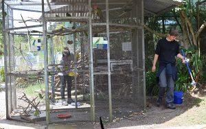 Tierhelfer Costa Rica Gehege