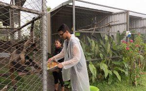 Tierhelfer Costa Rica Fütterung
