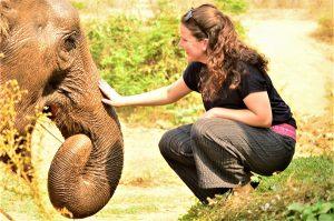 freiwilligenarbeit Thailand Elefantenarbeit