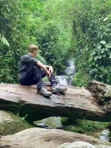 Regenwald Südamerika, Freiwilliger