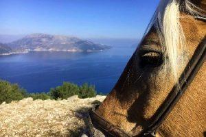 Auslandspraktikum Griechenland