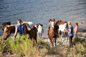 Griechenland Pferde , Reitpraktikum
