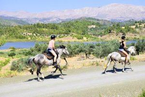Reitpraktikum Griechenland, Auslandsaufenthalt