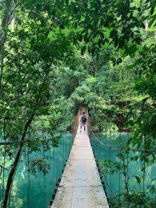 Nationalpark Costa Rica Hängebrücken